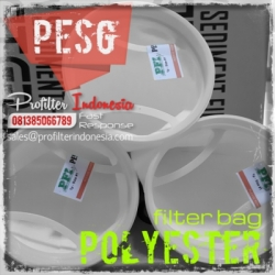 PESG Polyester Cartridge Filter Bag Indonesia  large