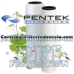 Pentek CC 20 Coconut Shell Granular Activated Carbon Cartridge Filter PN 155138 43 cartridgefilterindonesia  large