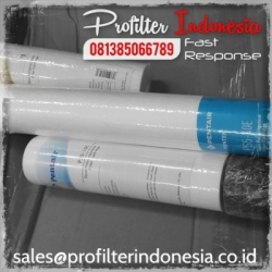 Pentek P Series filter cartridge indonesia  large