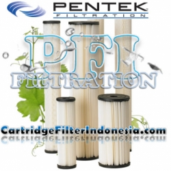 Pentek S1 20BB Pleated Cellulose Sediment Filter Cartridge Indonesia  large