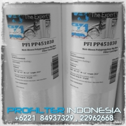 d PP45 Big Blue Cartridge Filter Indonesia  large