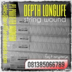 d d PFI DLSW String Wound Cartridge Filter Indonesia  large