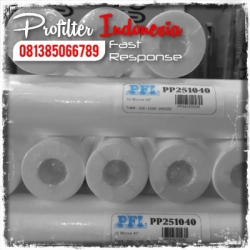 d d PP25 Cartridge Filter Indonesia  large